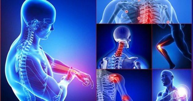 Epaplus colágeno hialurónico protege las articulaciones y la piel