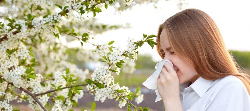 Alergia yo?…